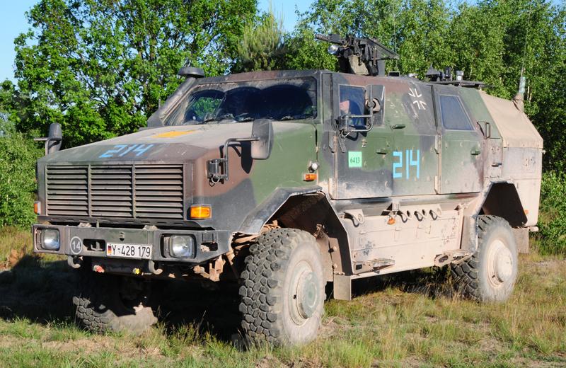 Dingo 2 GE A2 PatSich (1)