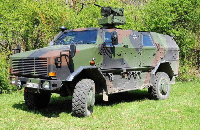 Dingo 2 GE A2.3 FLW 200 (1)