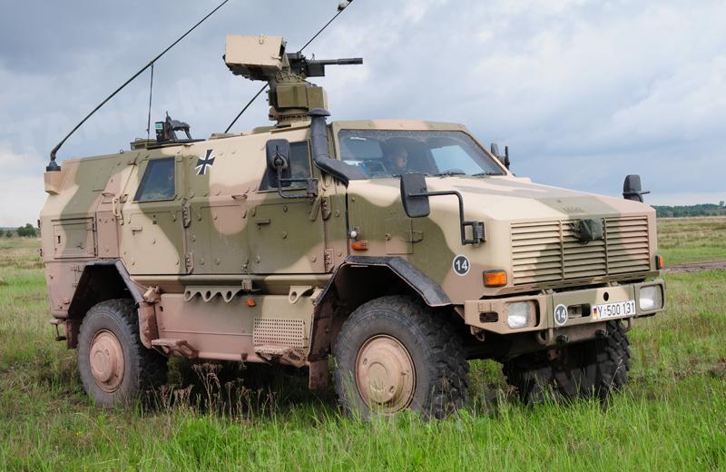 Dingo 2 GE A3.3 PatSich (4)